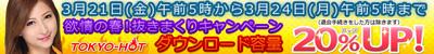 960_120spring2.jpg