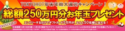 tokyohot_cam_20141219_2.jpg