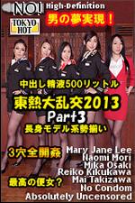 2013-part3_v.jpg