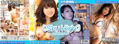 sky176-1600x600_default.jpg